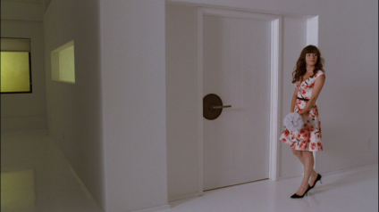 pushing daisies dummy 102 door