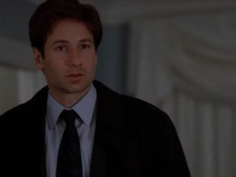 x files wetwired mulder