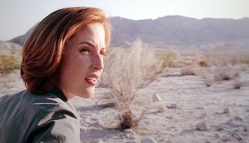 Desert Rose Scully (copyright the friends who  patted my head throughout this episode and then took pictures of me curled up on the floor)