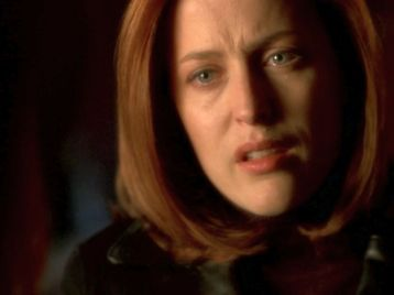 xfiles providence scully mulder maybe alive